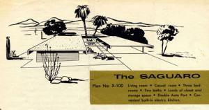 saguarorendering